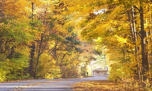 Warren Dunes road in fall