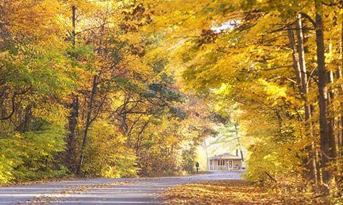 Warren Dunes road in fall
