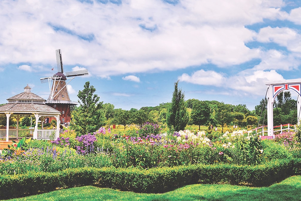 Holland gardens with windmill