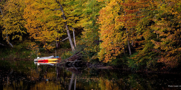 fall colors lake