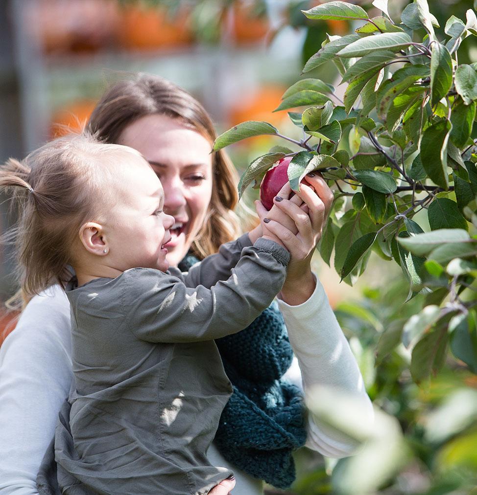 mom & daughter picking apples
