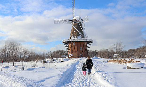 Holland Windmill Snow